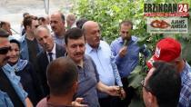 Ahıska Türkleri İçin Yapılan Seralarda Hasat Sevinci